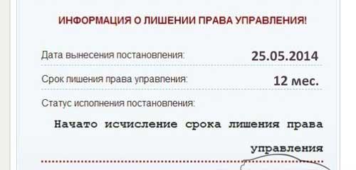 Проверка водительского удостоверения онлайн